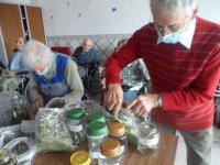 Casa do Povo de Cerdeira e Moura da Serra, I.P.S.S. – Chás e os seus cheiros, benefícios e tratamentos…